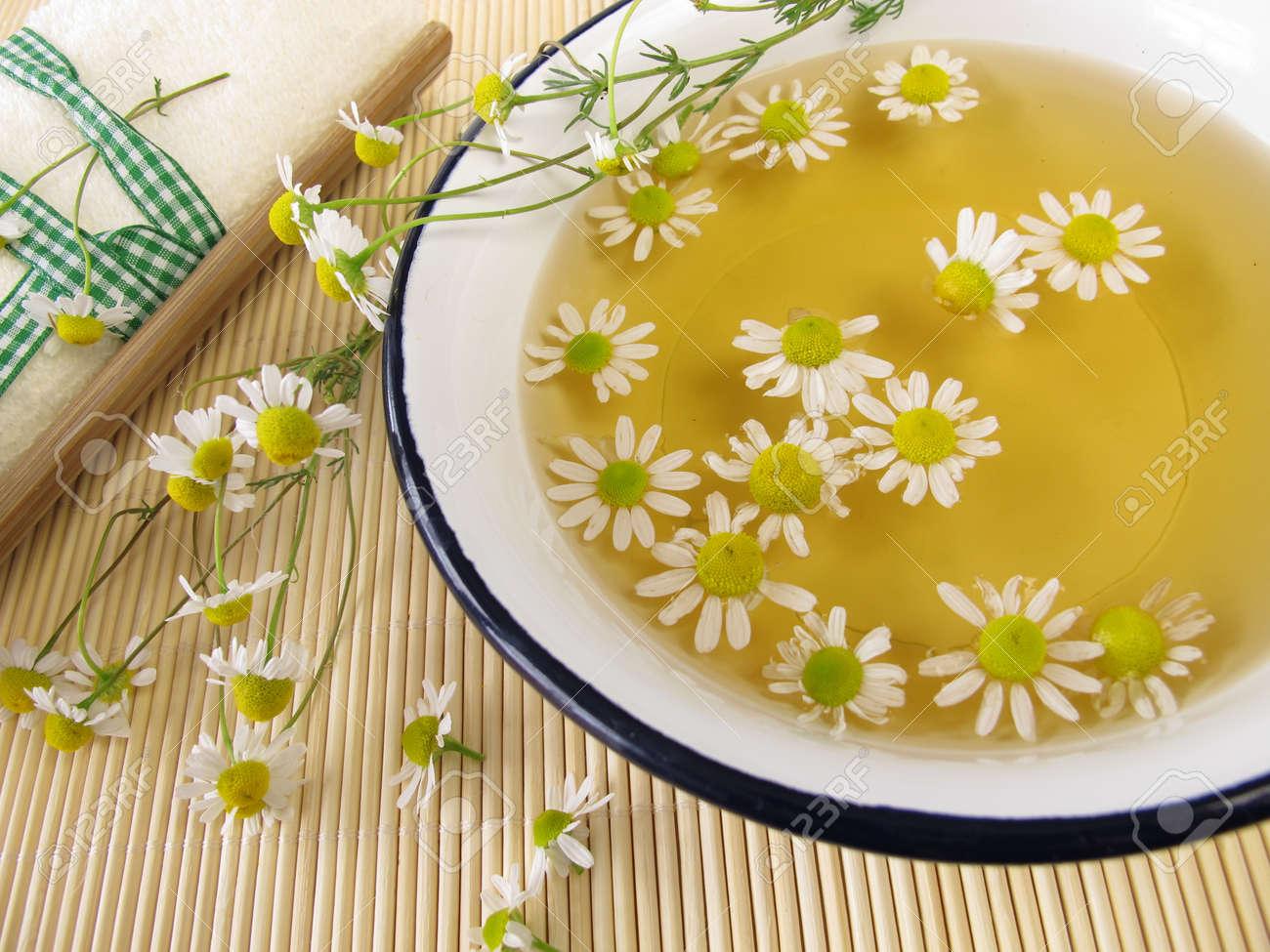 Ромашка аптечная (лекарственная трава) - полезные свойства 71