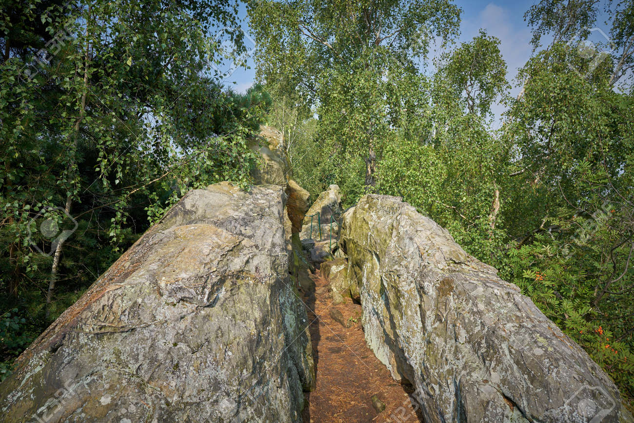 Single trail harz