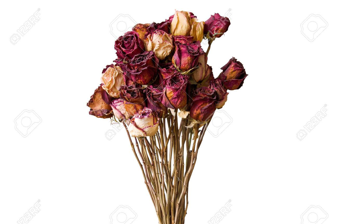Bouquet of dried flowers wilted rose on a white background stock bouquet of dried flowers wilted rose on a white background stock photo 45901539 izmirmasajfo Images