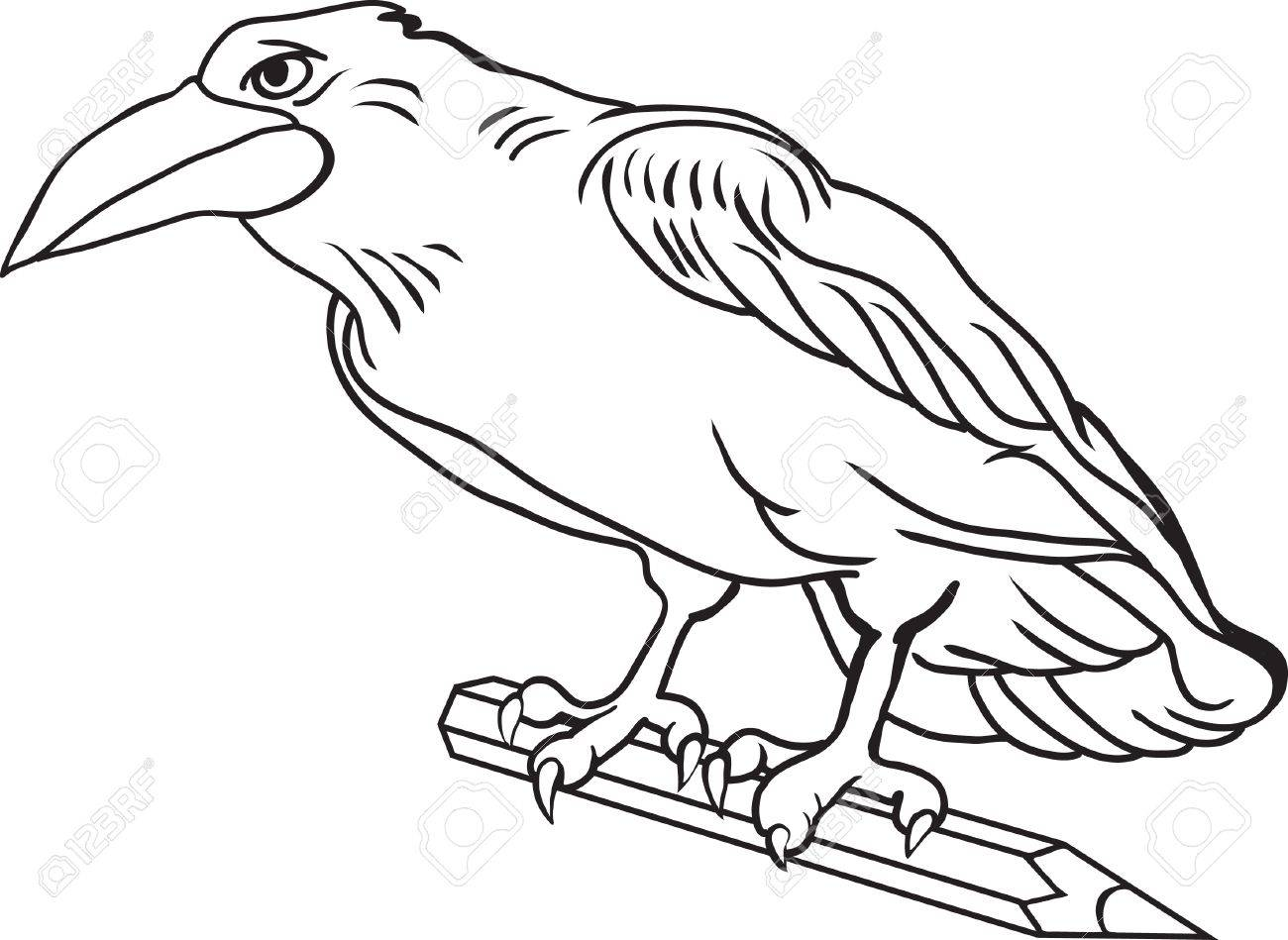 Contour drawing crow bird holds a pencil