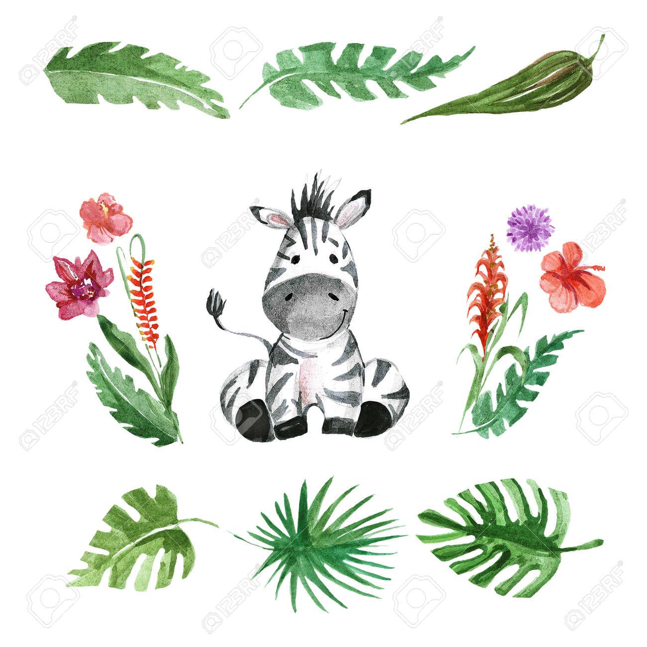 Cute baby Zebra Animal for kindergarten, nursery, children clothing, kids pattern, invitation, baby shower - 67279878
