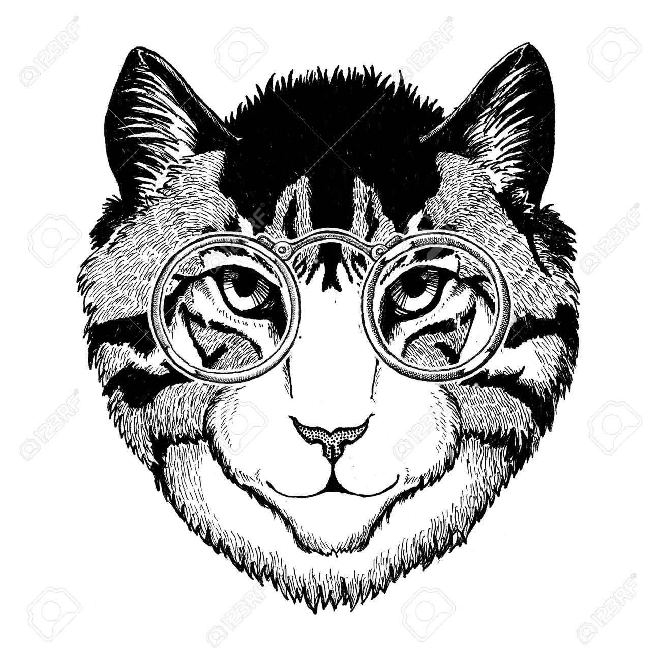 a37e1219c Cool wild cat Fashionable animal Hipster style Vintage illustration Image  for tattoo, logo, emblem