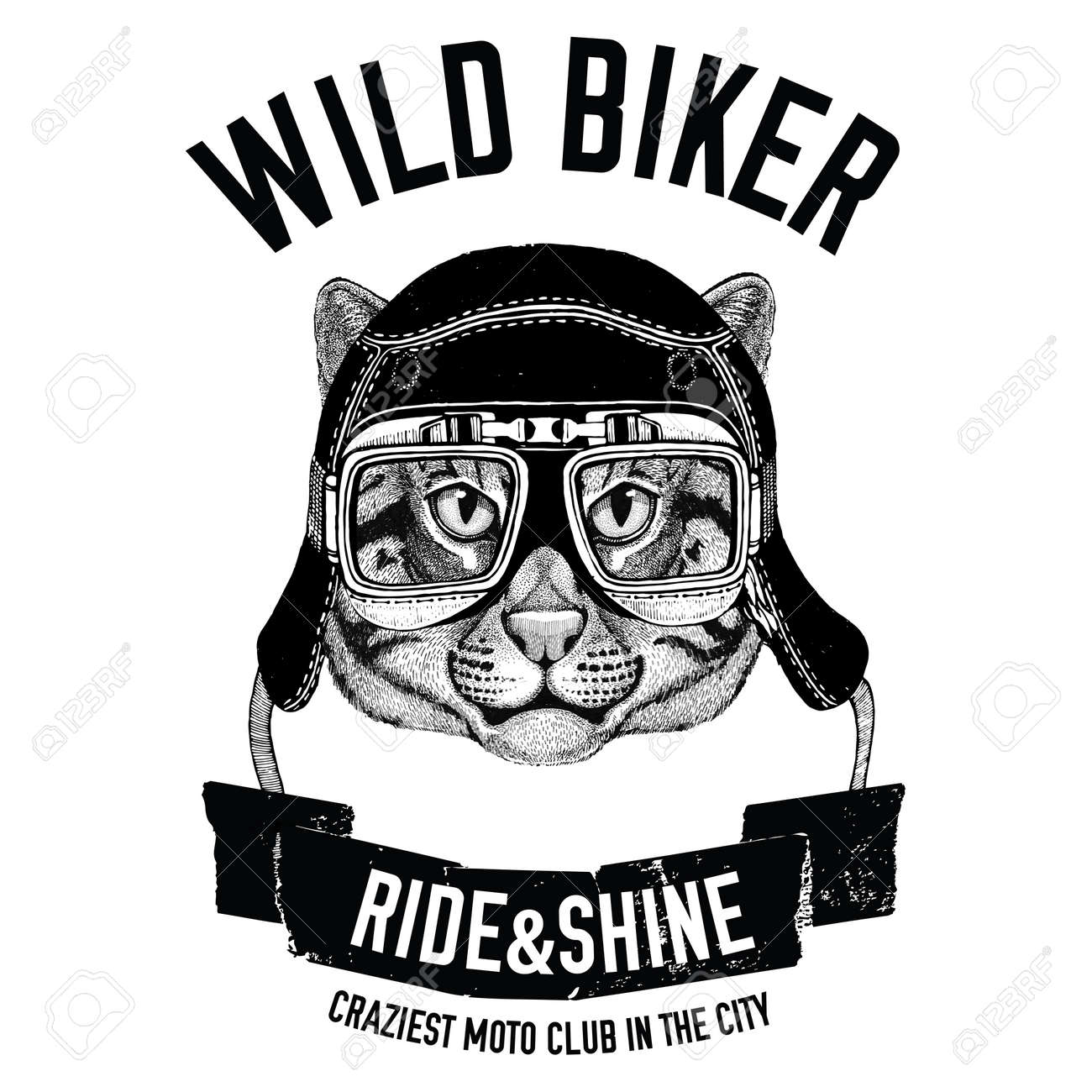 Vintage Images Of Fishing Cat For T Shirt Design For Motorcycle