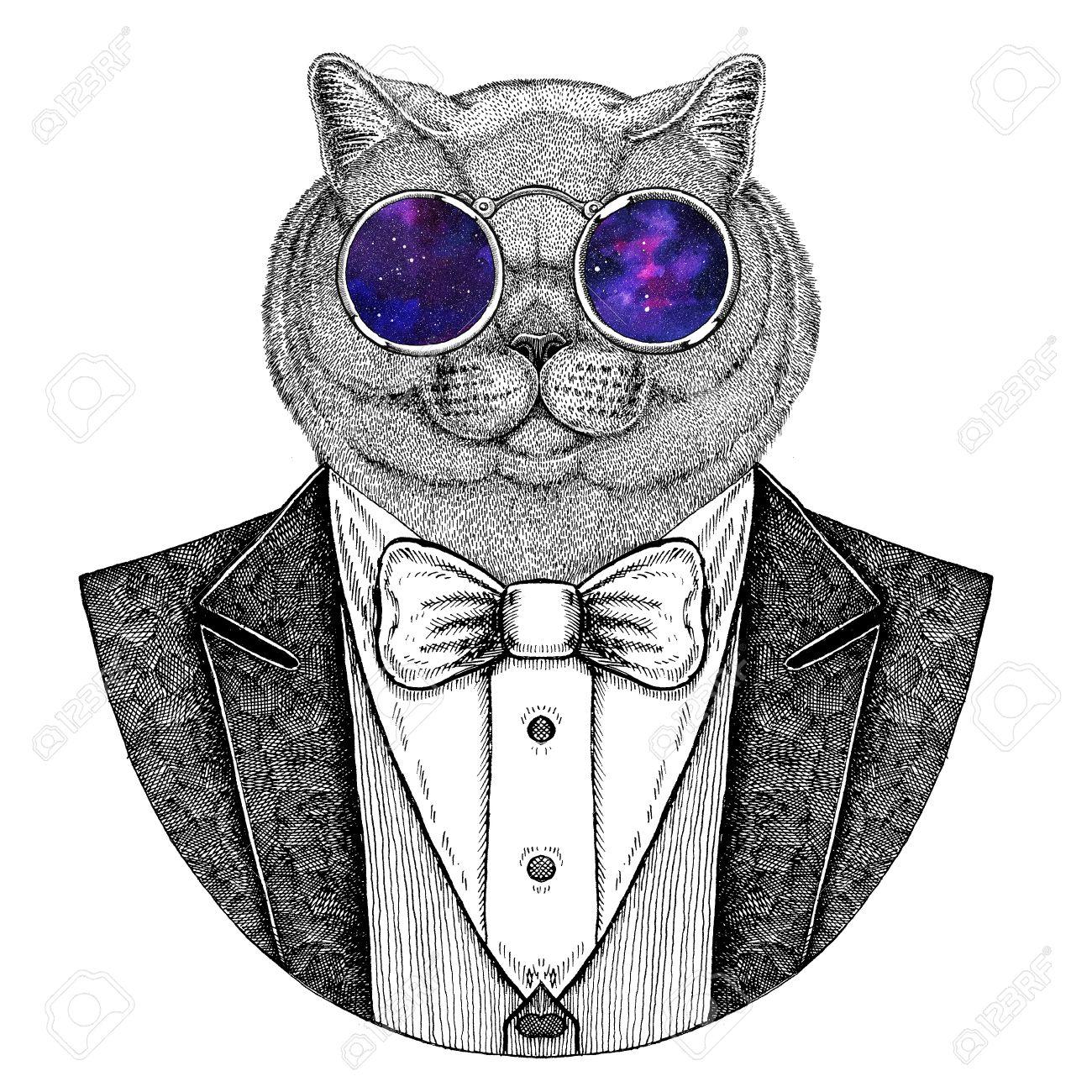Brithish Noble Cat Hipster Animal Hand Drawn Image For Tattoo Emblem Badge Logo