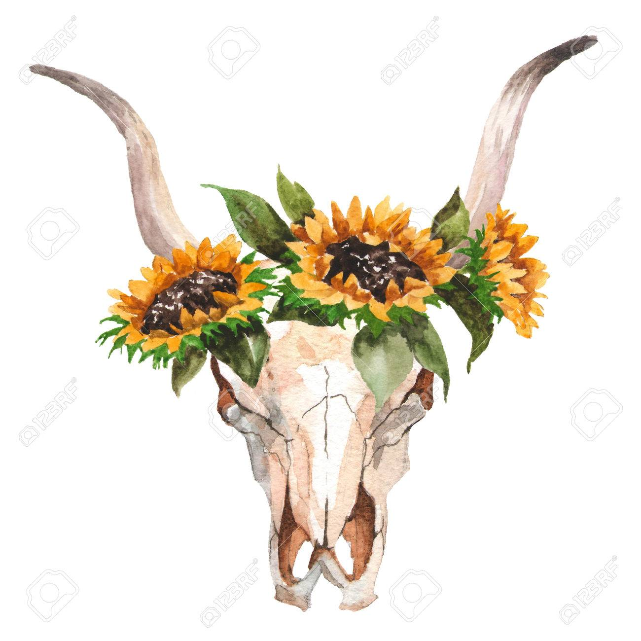 Watercolor Isolated Bulls Head With Flowers And Feathers On White
