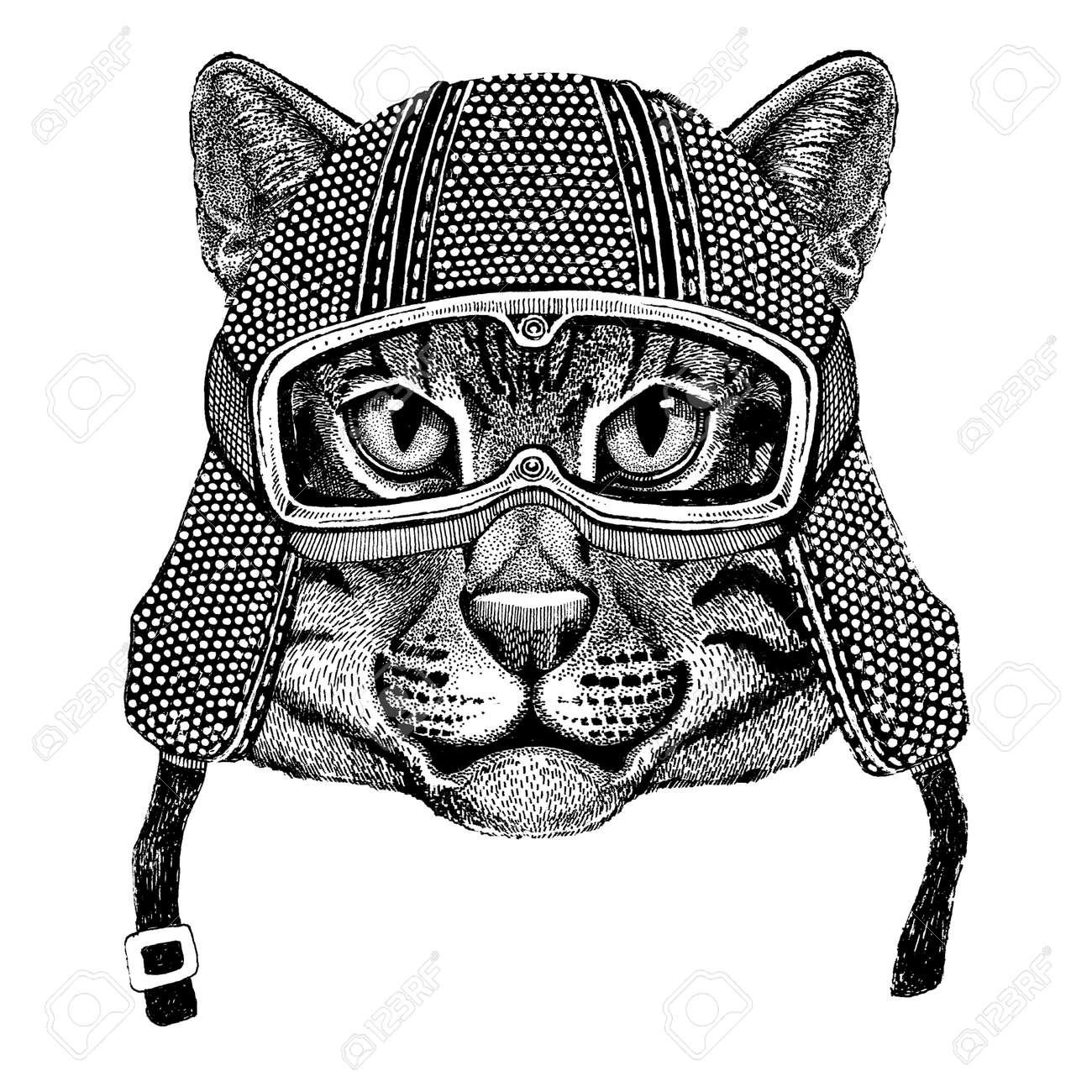 Chat Sauvage Chat Porter Casque Moto Vintage Tatouage Insigne Emblème Logo Patch T Shirt