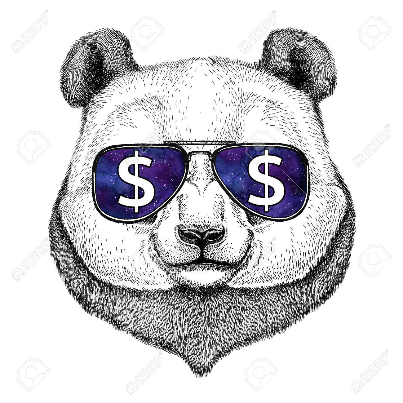 Panda bear, bamboo bear wearing glasses with dollar sign Illustration with wild animal for t-shirt, tattoo sketch, patch - 80729638