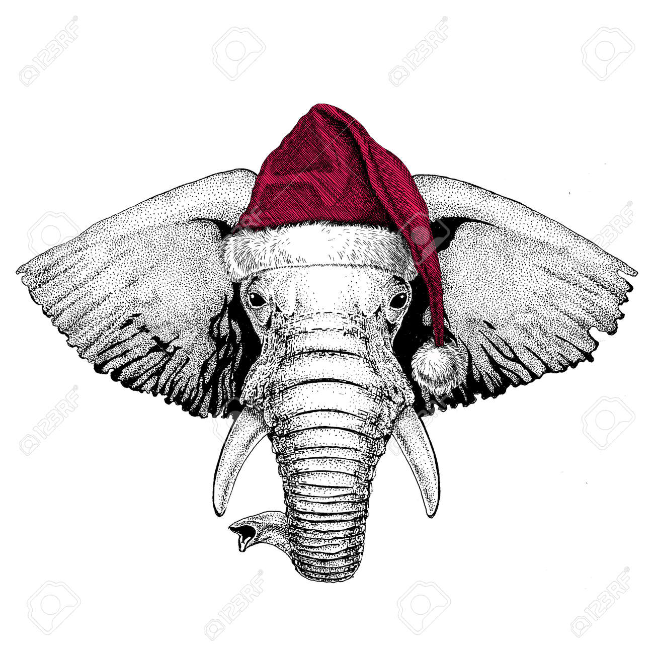 African Or Indian Elephant Christmas Illustration Wild Animal ...