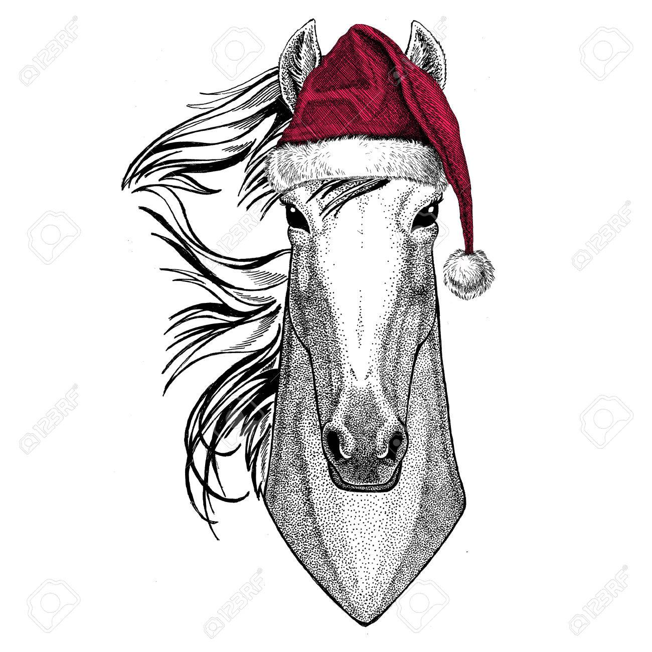 Christmas illustration Wild animal wearing christmas santa claus hat Red winter hat Holiday picture Happy new year - 81962058