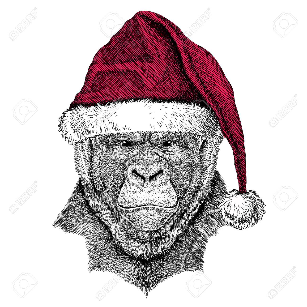 Christmas illustration Wild animal wearing christmas santa claus hat Red winter hat Holiday picture Happy new year - 81962069