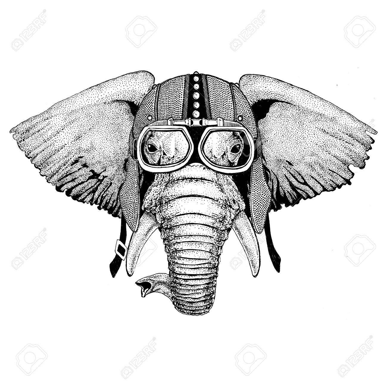 African Or Indian Elephant Motorcycle Biker Aviator Fly Club Illustration For Tattoo T Shirt Emblem Badge Logo Patch Banco De Imagens Royalty Free Ilustracoes Imagens E Banco De Imagens Image 82119944