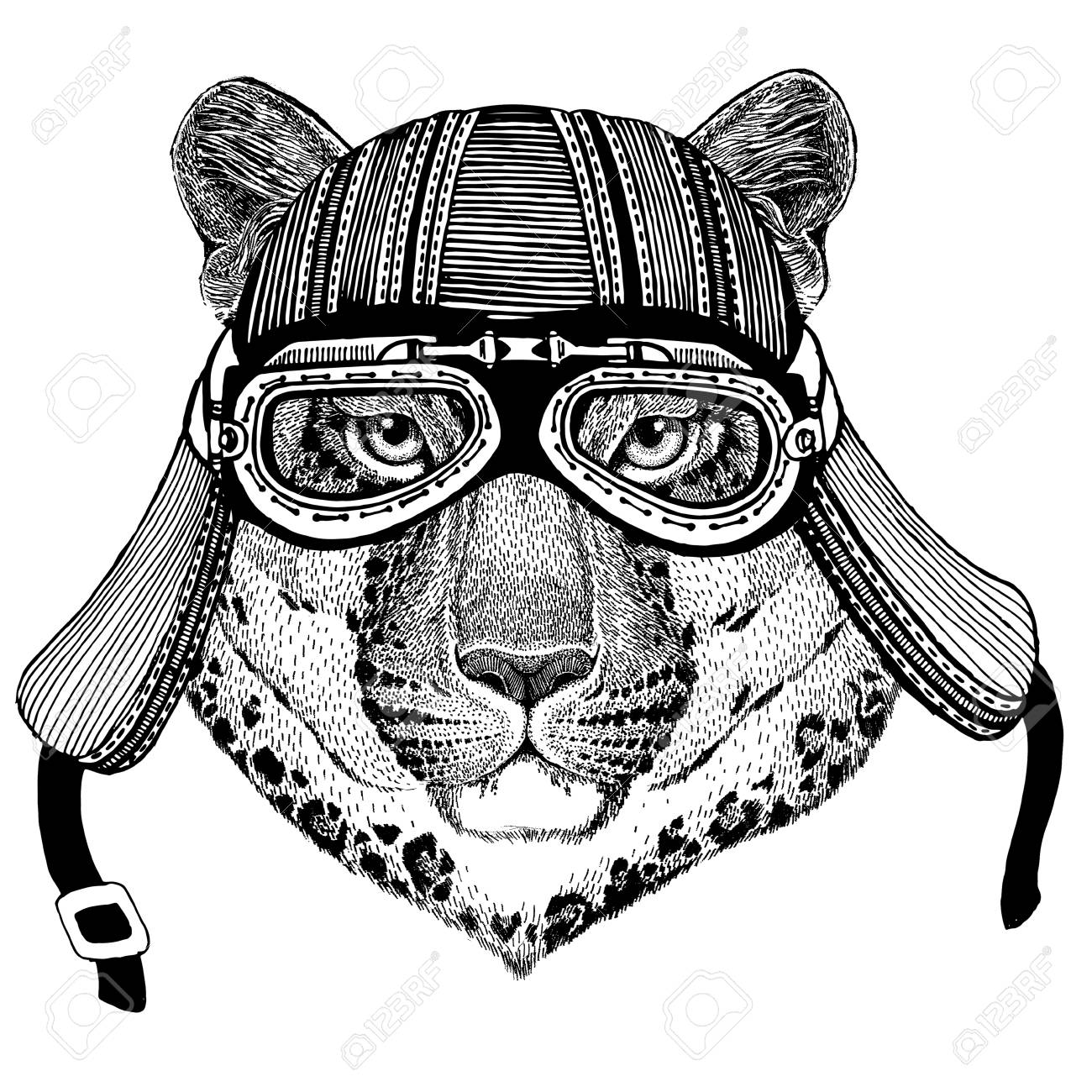 Wild cat Leopard Cat-o-mountain Panther Wild animal wearing biker motorcycle aviator fly club helmet Illustration for tattoo, emblem, badge, logo, patch - 82163361
