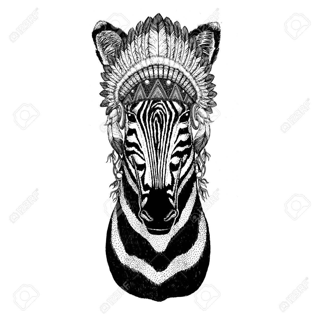 Atemberaubend Zebra Vorlagen Zeitgenössisch - Entry Level Resume ...