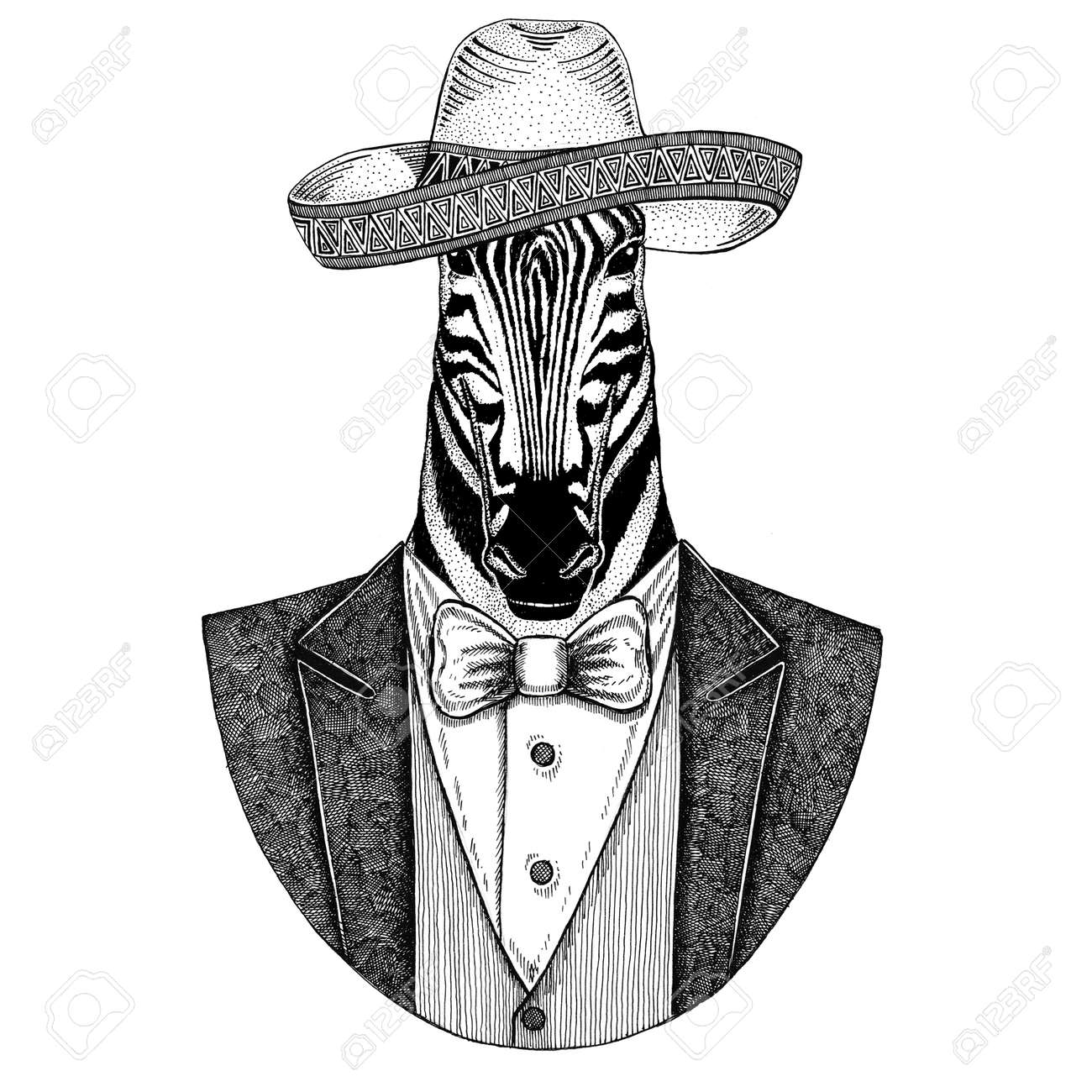 1f0c8334d Zebra Horse Wild animal wearing Sombrero - traditional mexican hat Hand  drawn illustration for tattoo