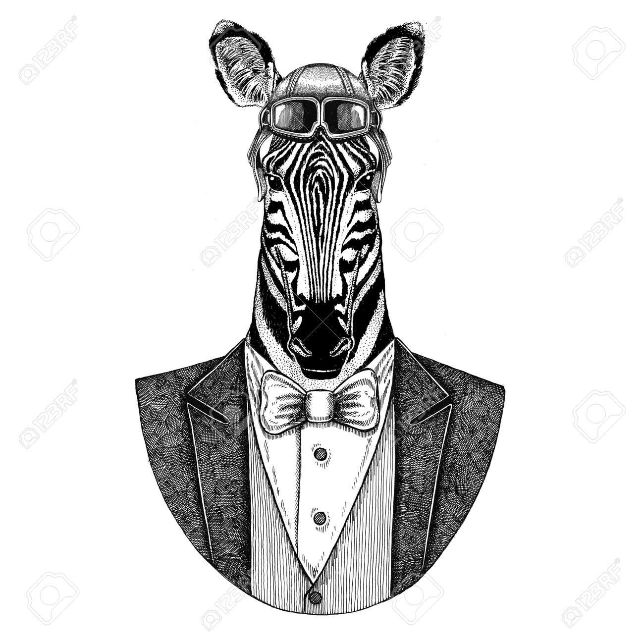 248d90196 Illustration - Zebra Horse Animal wearing aviator helmet and jacket with bow  tie Flying club Hand drawn illustration for tattoo
