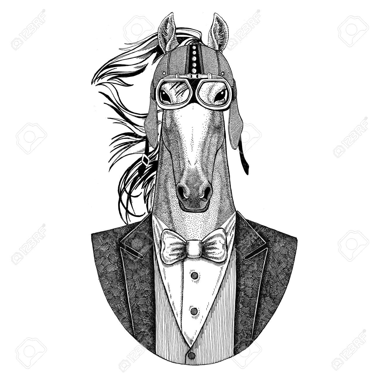 dc00d8096 Horse