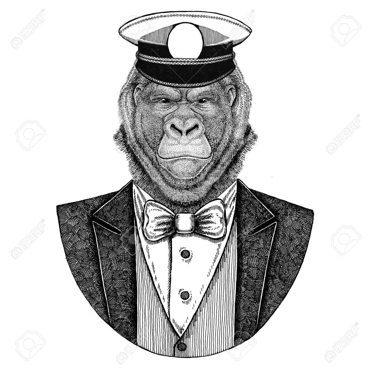 cd57444bf Gorilla, monkey, ape Animal wearing jacket with bow-tie and capitans peaked  cap