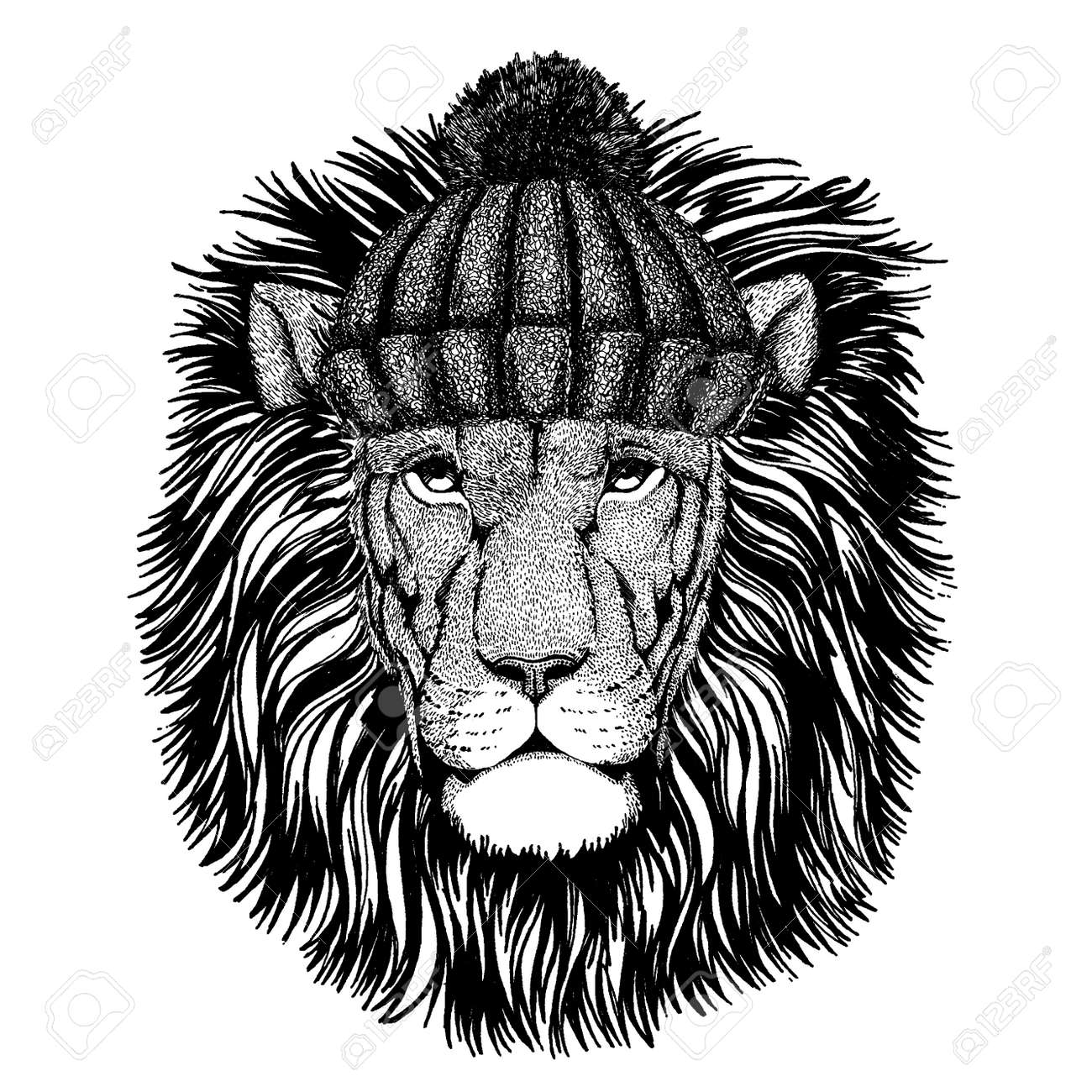 Wild Lion Cool Animal Wearing Knitted Winter Hat Warm Headdress