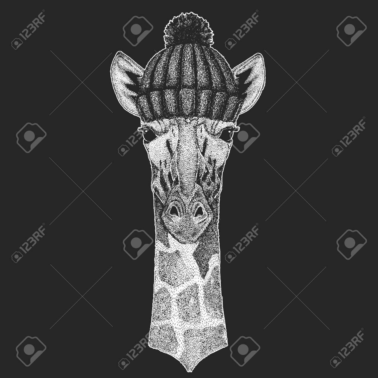 Cute Animal Wearing Knitted Winter Hat Camelopard Giraffe Hand