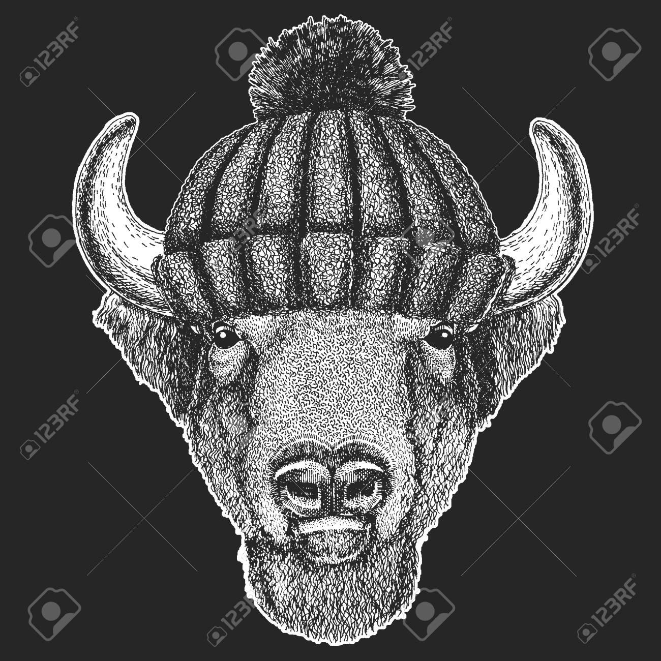 35316cb79 Cute animal wearing knitted winter hat Buffalo, bison,ox, bull Hand drawn  image