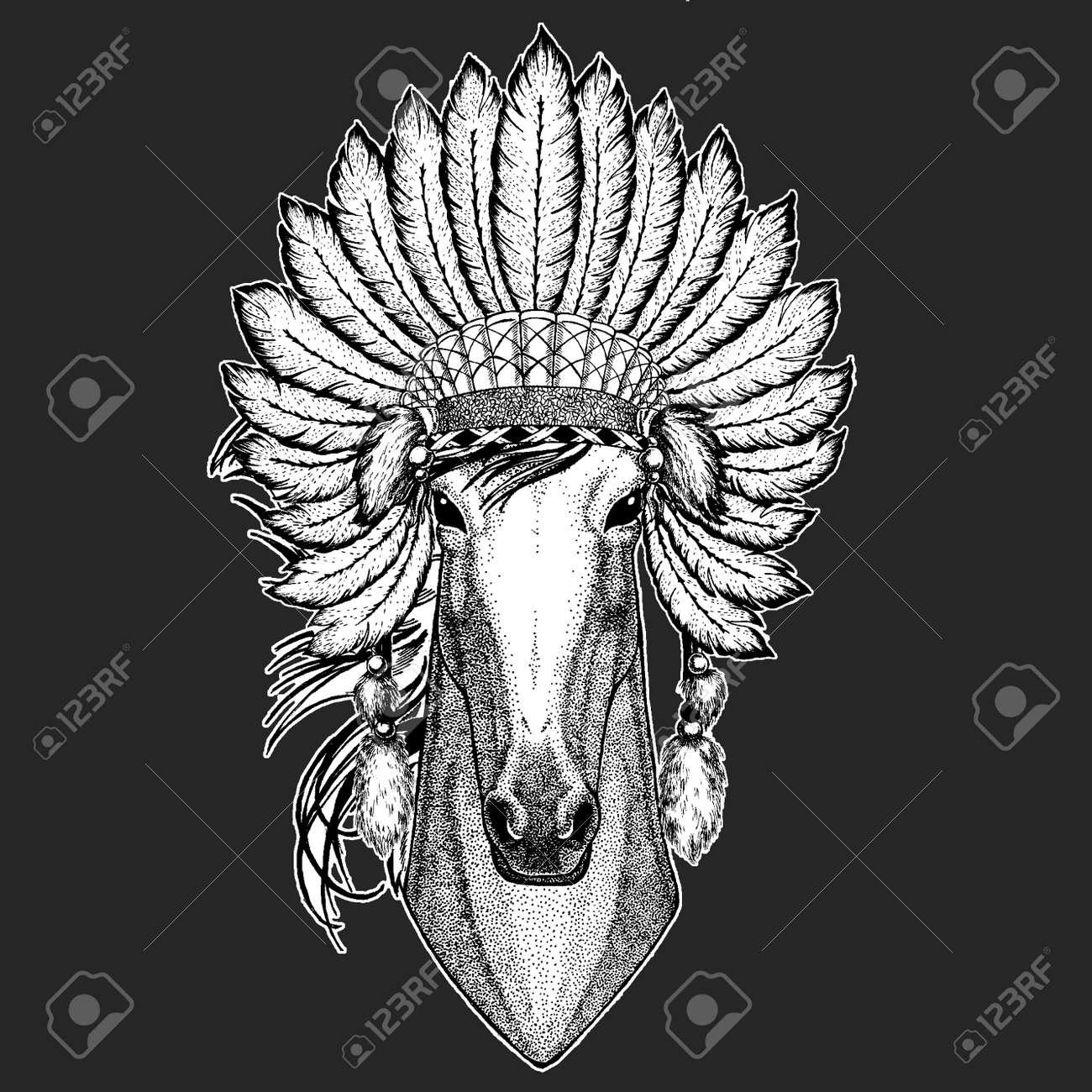 57a6c2624f2 Horse