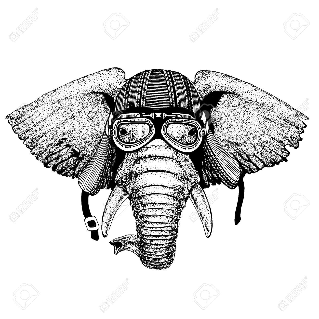 African Or Indian Elephant Wild Biker Animal Wearing Motorcycle Royalty Free Cliparts Vectors And Stock Illustration Image 120708440
