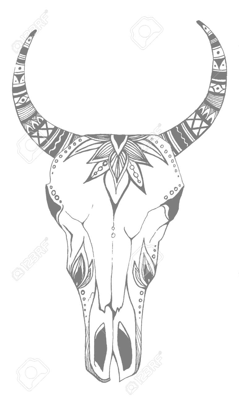 Cow, buffalo, bull skull in tribal style with flowers. Bohemian, boho vector illustration. Wild and free ethnic gypsy symbol. - 140973886