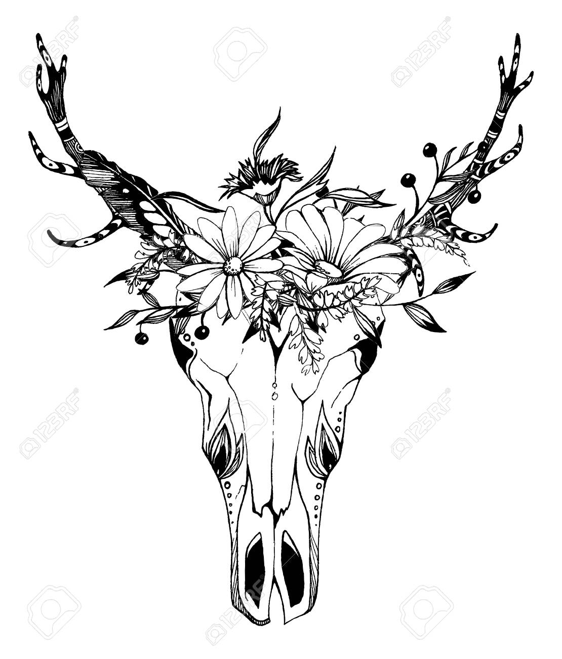 Cow, buffalo, bull skull in tribal style with flowers. Bohemian, boho vector illustration. Wild and free ethnic gypsy symbol. - 139623374