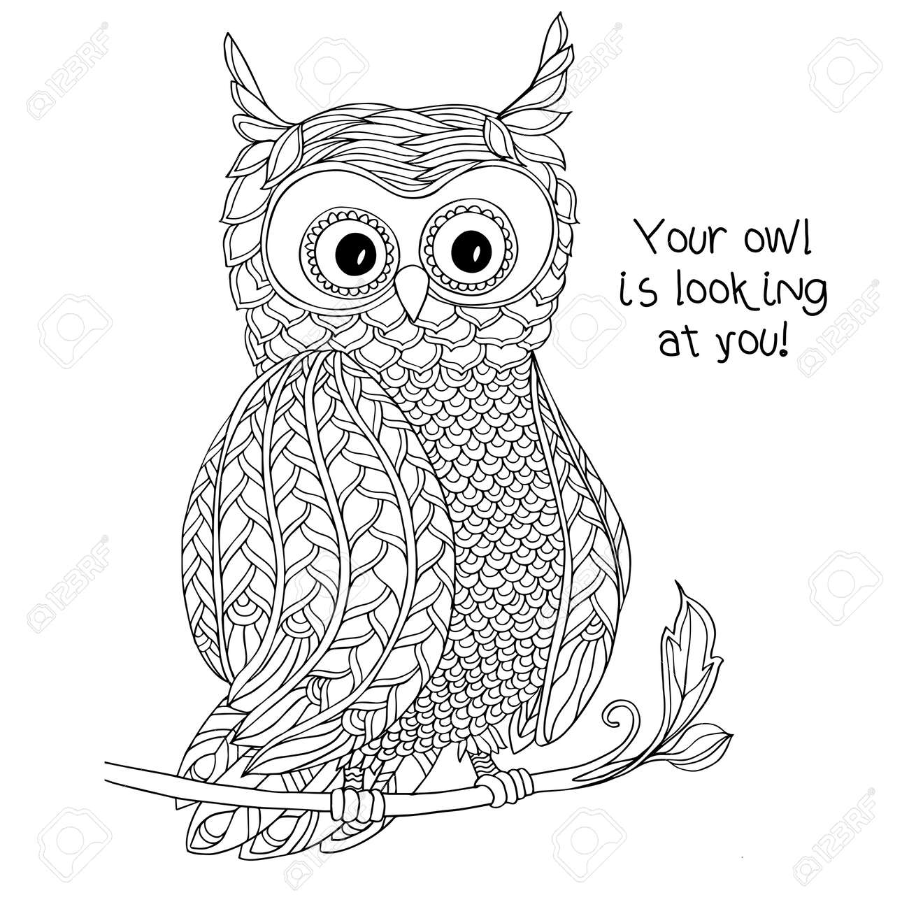 Zen coloring books for children - Coloring Book For Adult And Older Children Coloring Page With Cute Owl Outline Drawing