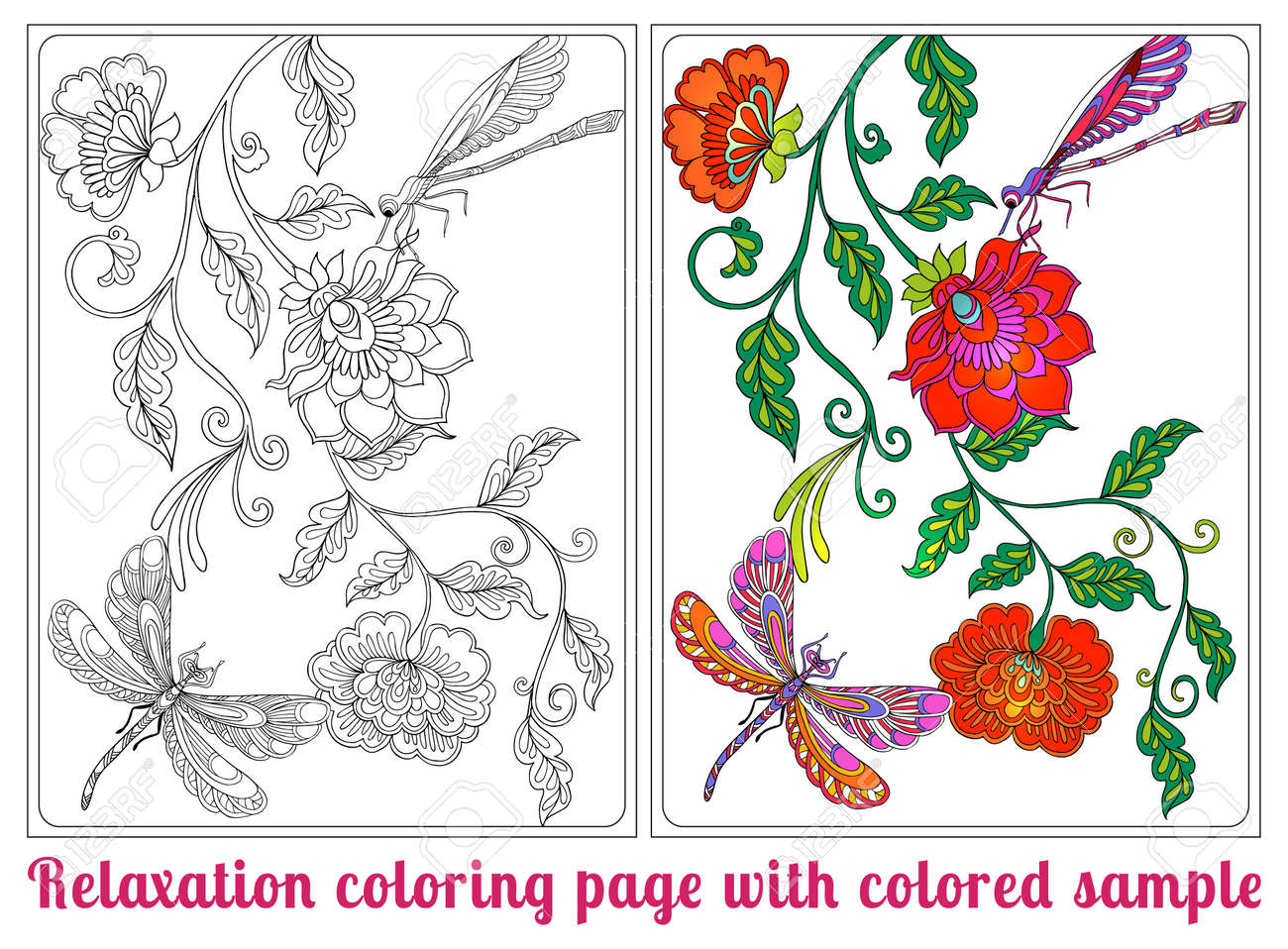 En Las Flores, Pájaros Y Mariposas. Libro De Colorante Para Los ...