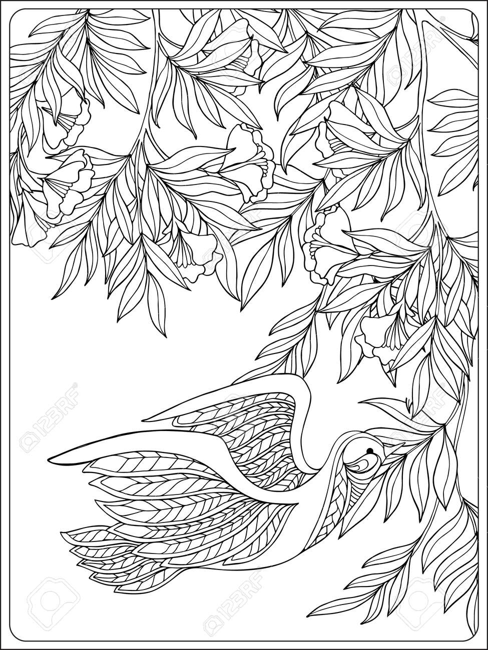 decorative flowers and birds coloring book for and older