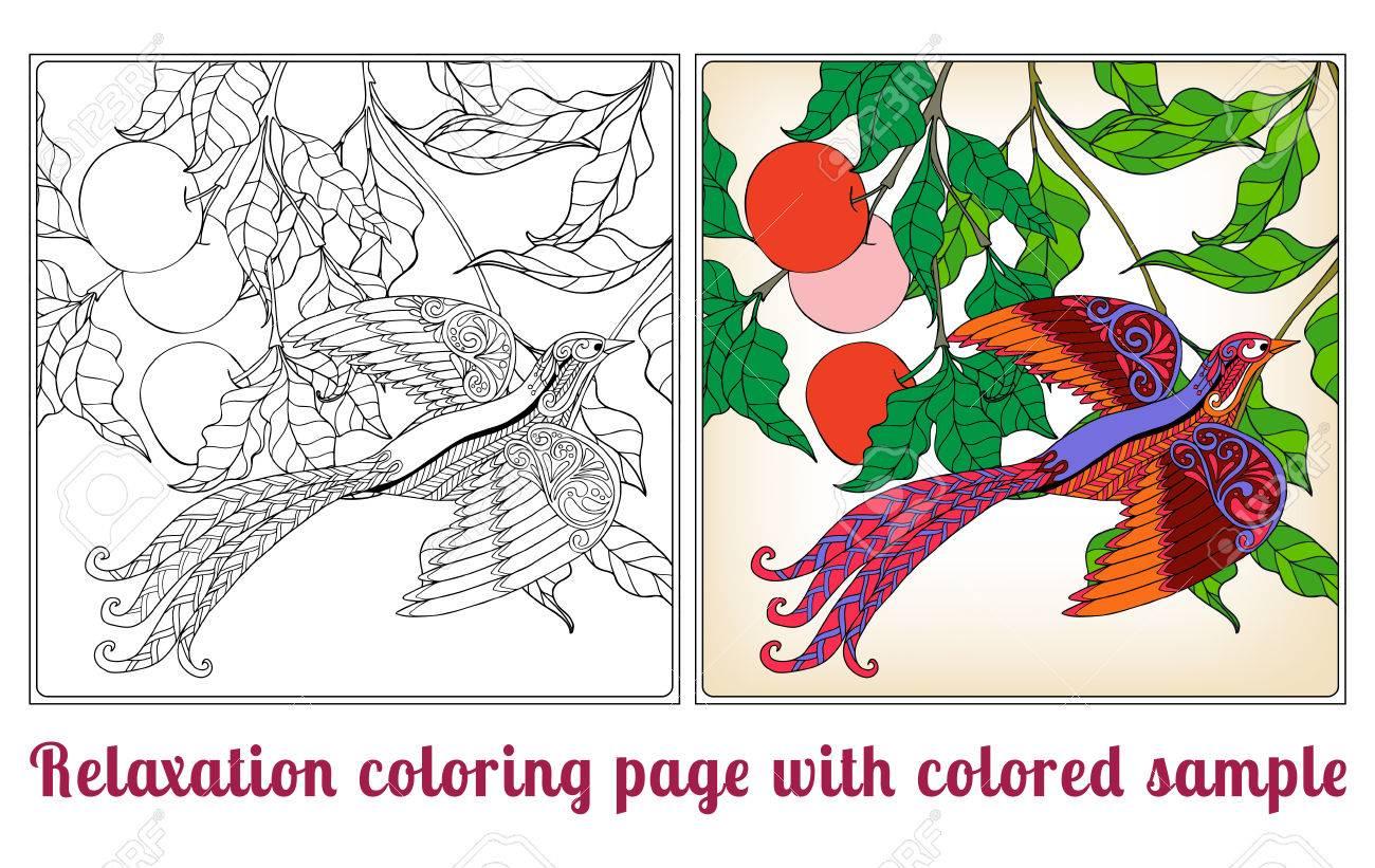 Flores Decorativas Y Aves. Libro De Colorante Para Los Adultos Y ...