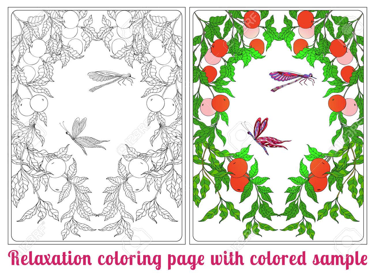 Fleurs Décoratives Les Oiseaux Et Les Papillons Livre à Colorier