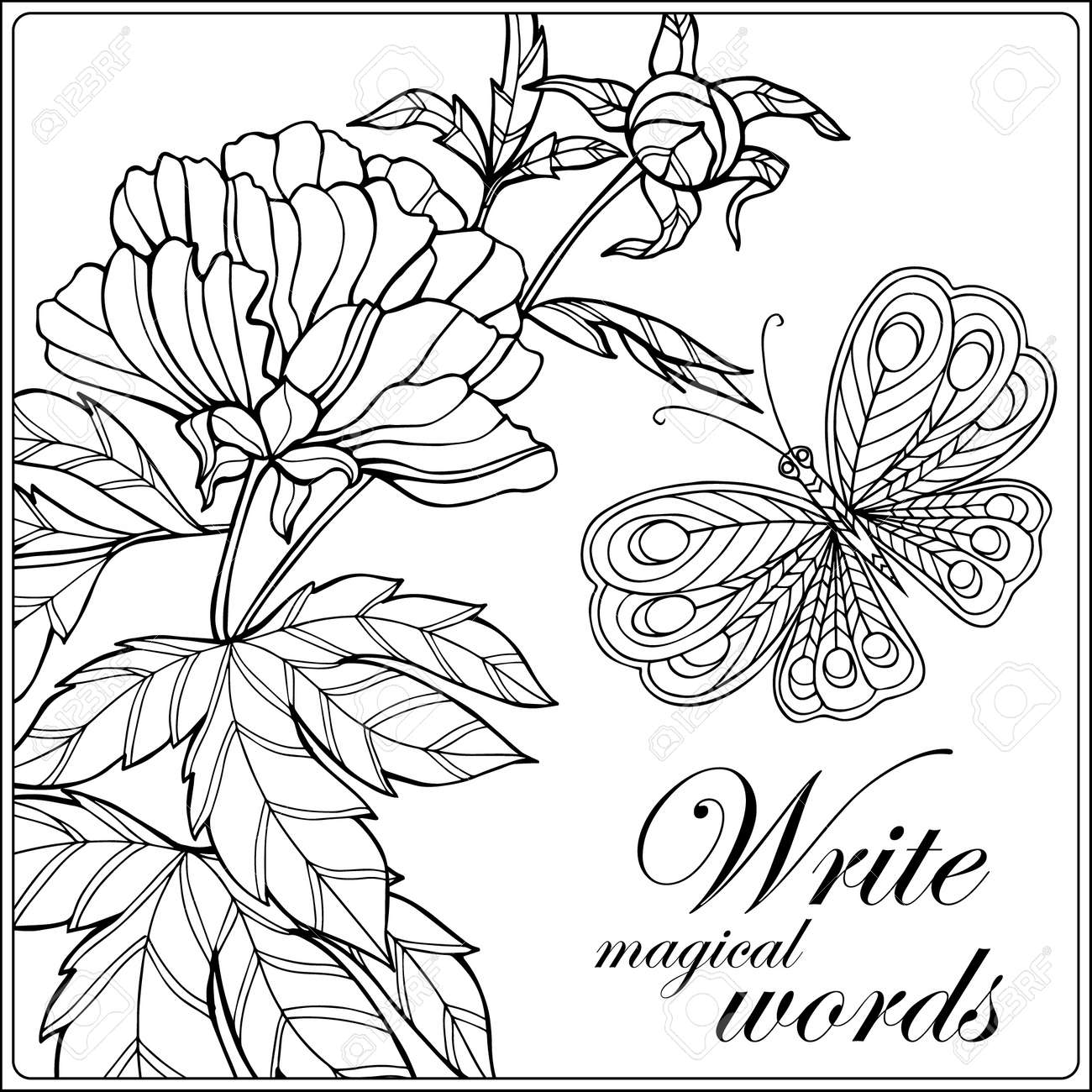 Decorative Flowers Birds And Butterflies Coloring Book For