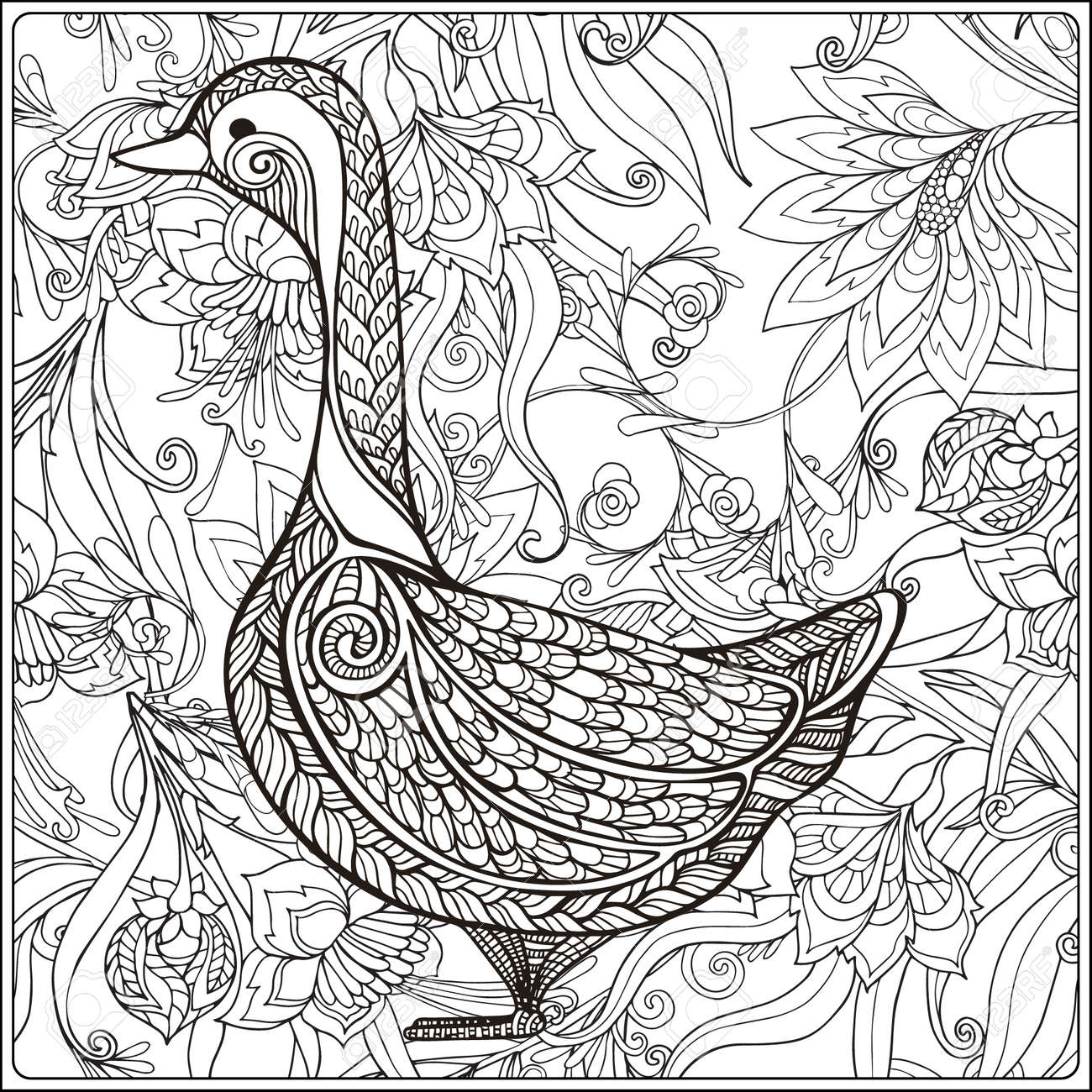 Goose On Floral Background. Coloring Book For Adult And Older ...