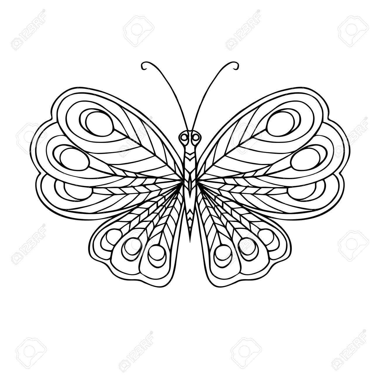 Decorative Butterfly Coloring Book For Adult And Older Children