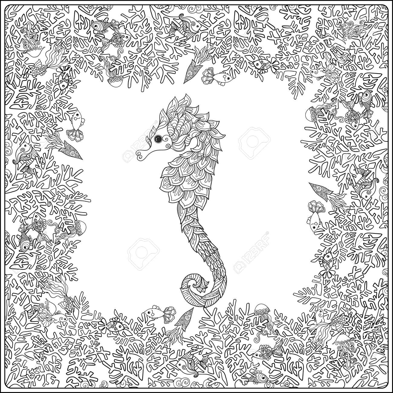 coloring page with corals and sea shells outline drawing
