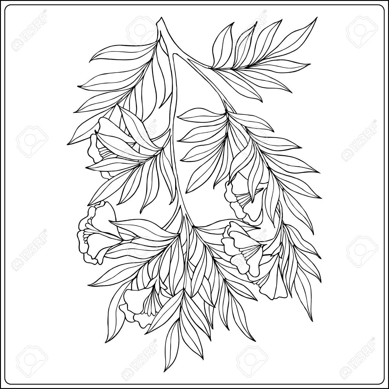 Co coloring book template - Co Coloring Book Flower Page Outline Decorative Branch With Flower In Vintage Style Coloring Book