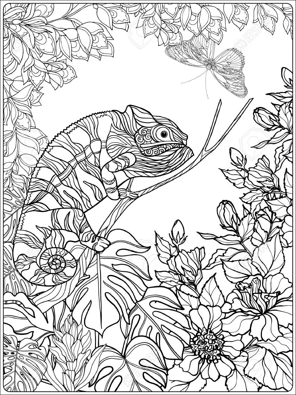 Tropical Oiseaux Et De Plantes Sauvages Collection De Jardin Tropical Coloriage Livre à Colorier Pour Les Adultes Et Les Enfants Plus âgés Outline