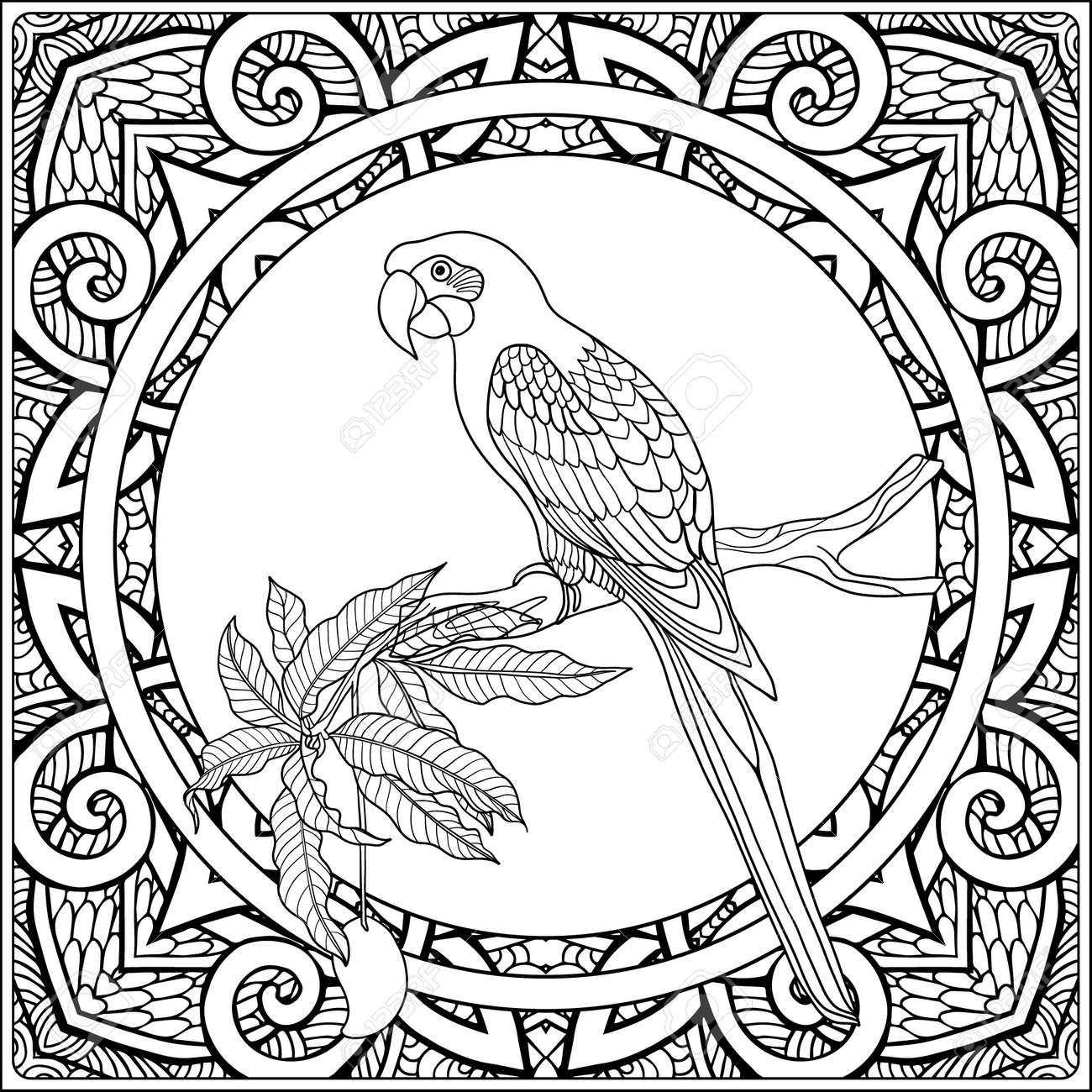 Animales Y Plantas Tropicales? N De Fondo Patrón Decorativo. Dibujo ...