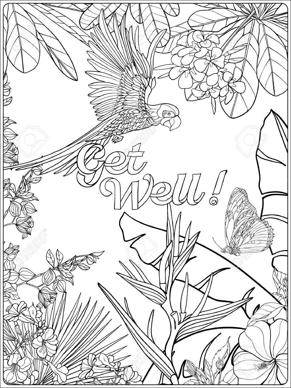 Tropical Wild Birds And Plants Tropical Garden Collection Coloring