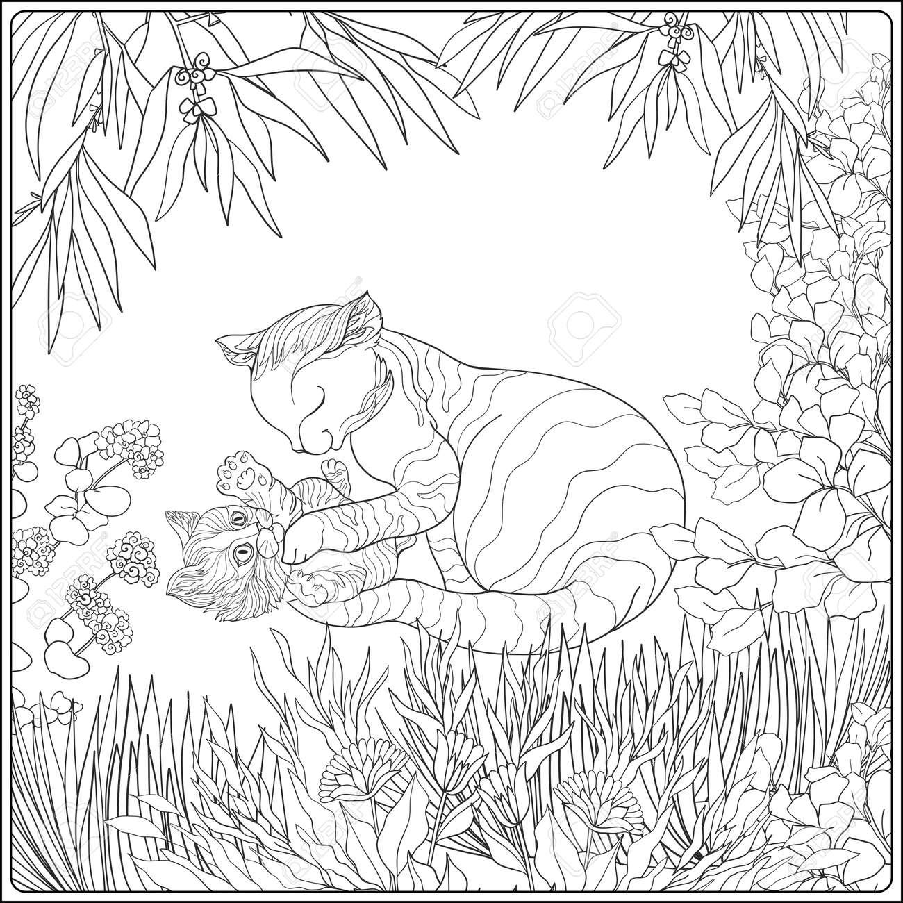 Livre à Colorier Pour Les Adultes Et Les Enfants Plus âgés Coloriage Avec Beau Chat De La Mère Et De Son Petit Kittern Dans Le Jardin