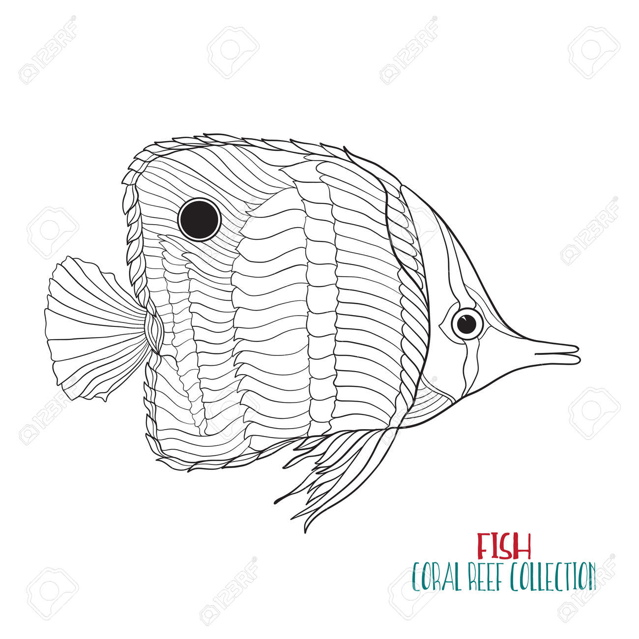 Coral Reef Collection Sea Or Aquarium Fish Outline Vector