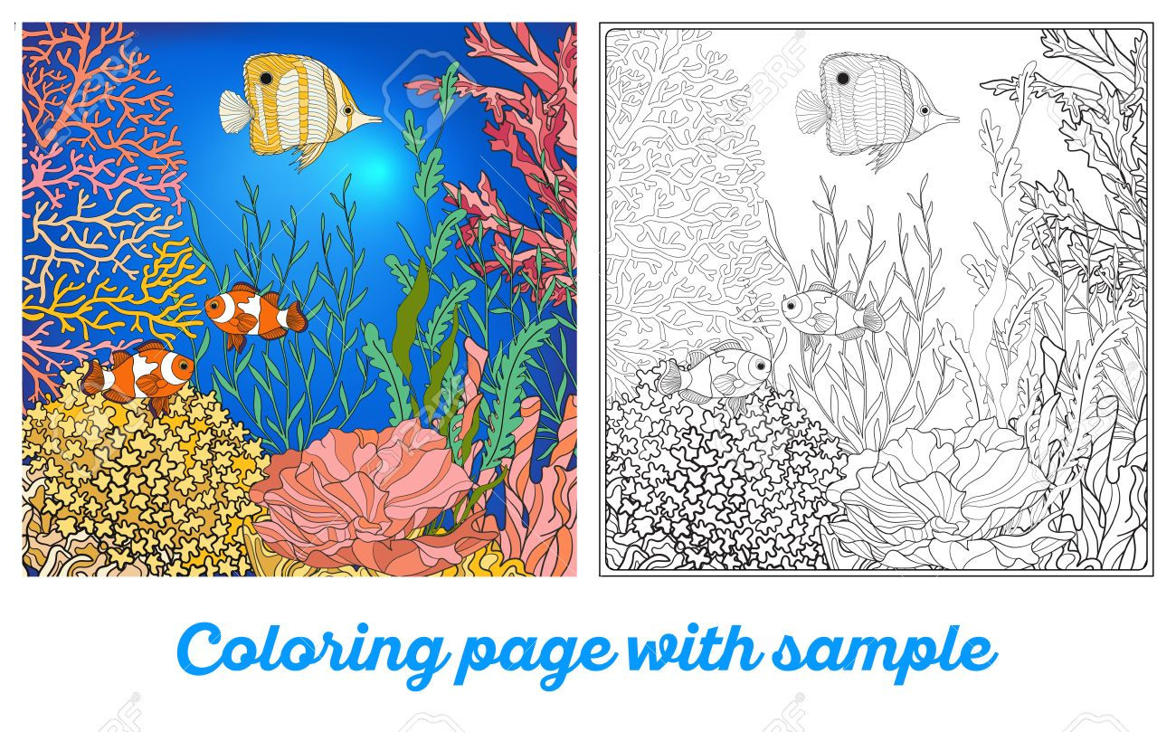 100 coral coloring pages sea anemone ink on vellum gravures