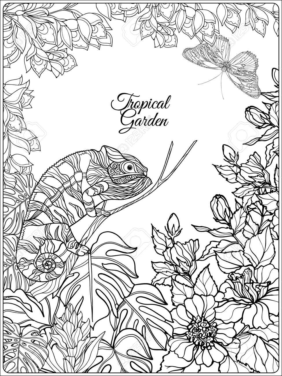 Tropische Wilde Vögel Und Blumen Und Platz Für Text. Malbuch Für ...