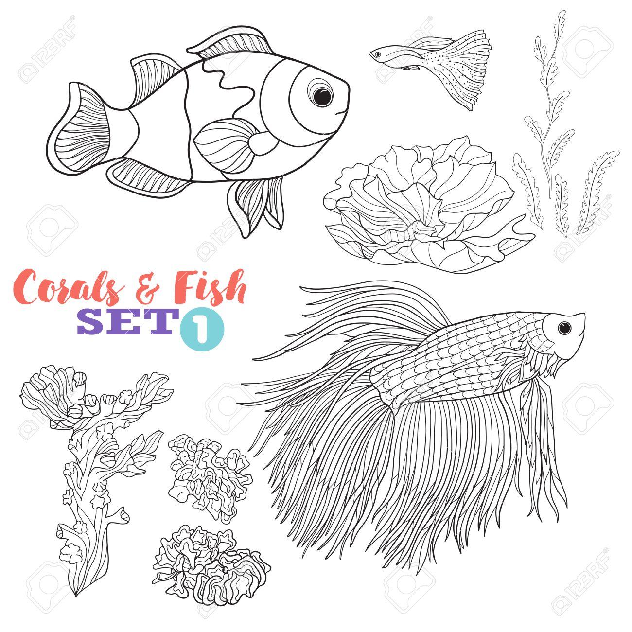 Immagini Stock Barriera Corallina E Set Di Pesce Buon Per Libro