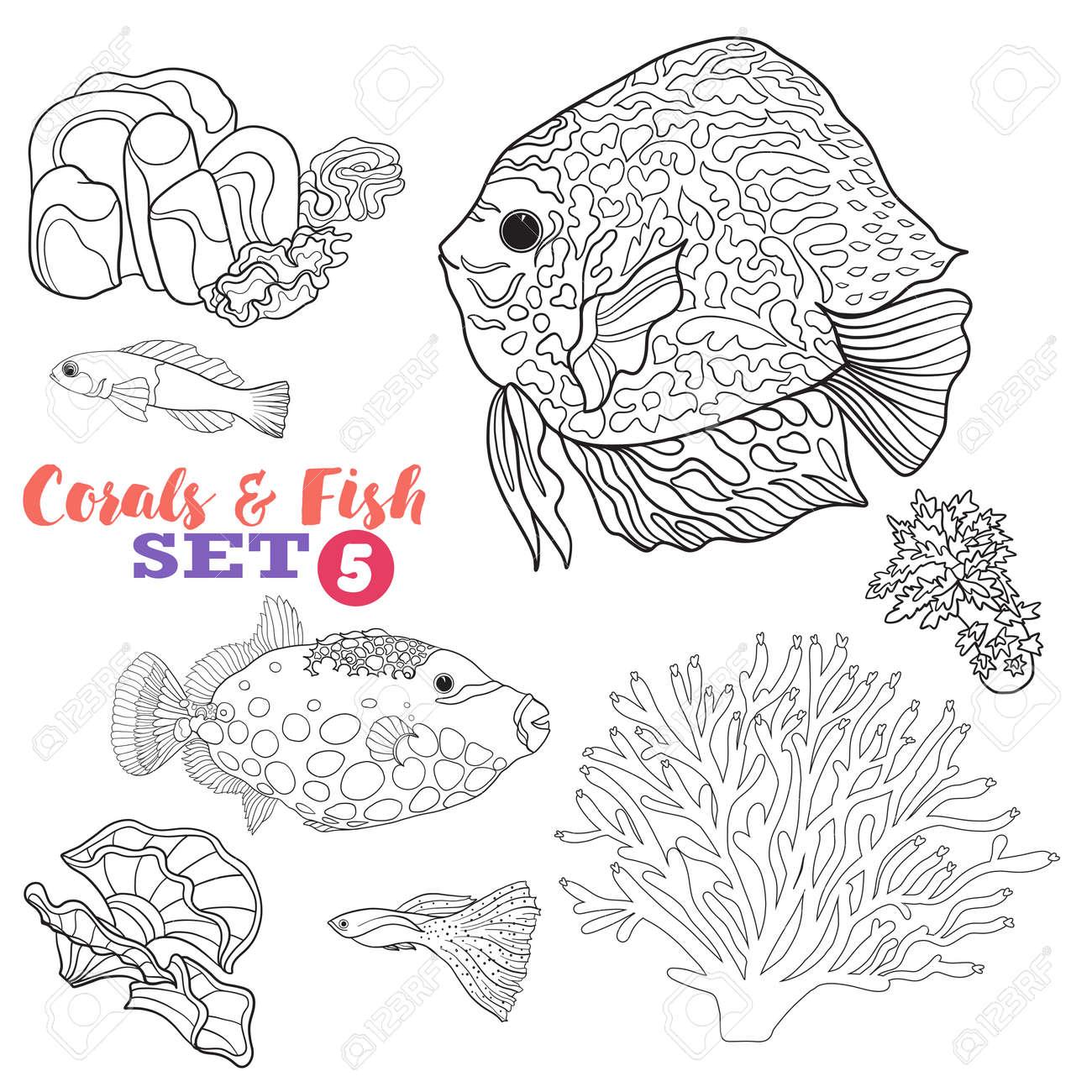 Encantador Peces De Arrecife De Coral Para Colorear Fotos - Dibujos ...