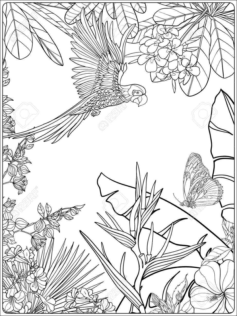 Tropical Wild Birds And Plants Tropical Garden Collection Tropical Coloring Pages