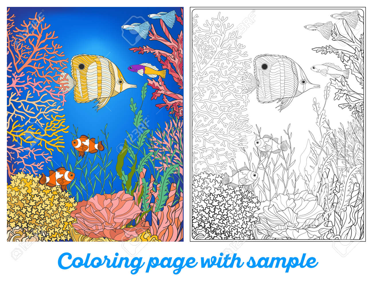 coral reef coloring page ocean plants coloring pages amazing