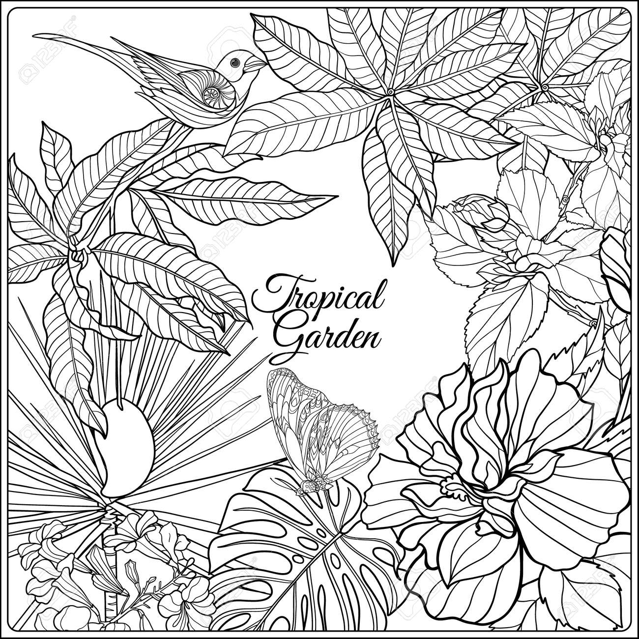 Tropical Wild Birds And Flowers Space For Text Coloring Book Adult Older